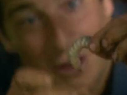 舌尖上的贝爷-小甲虫幼虫
