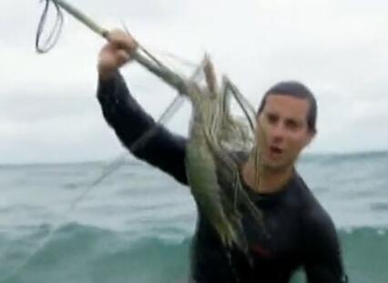 舌尖上的贝爷-大鳌虾